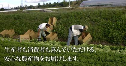 生産者も消費者も喜んでいただける安心な農産物をお届けします。